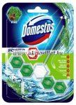 Domestos-Power-5-Pine-Wc-frissito-55gr