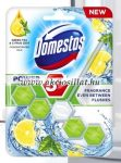 Domestos-Power-5-Green-Tea-Citrus-Wc-frissito-blokk-55g